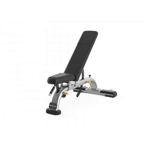 Precor Multi-Adjustable Bench DBR 119